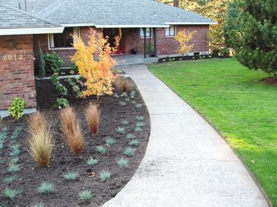 Landscapefrontofhouse
