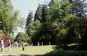Tuesdayinthepark