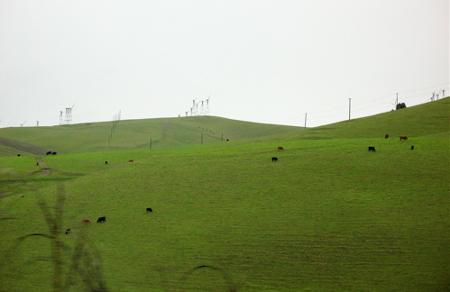 altamontpass.jpg