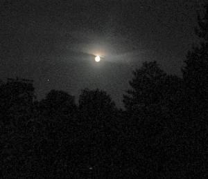 moonoverportland