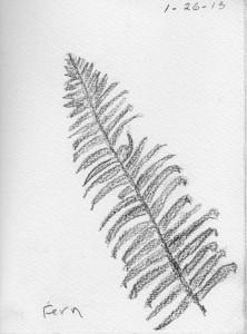 1-26-13 drawing
