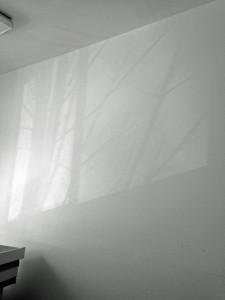 studioshadow