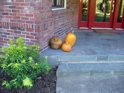 Pumpkinsathome