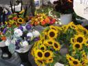 pfmflowers.jpg