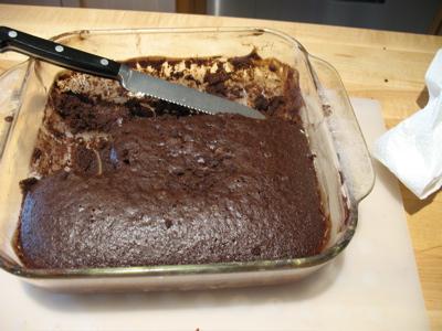 chocolatedumpcake.jpg