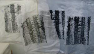 aspenprints