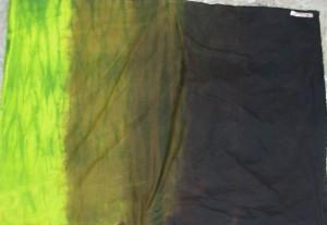 greenshiborioverpainted