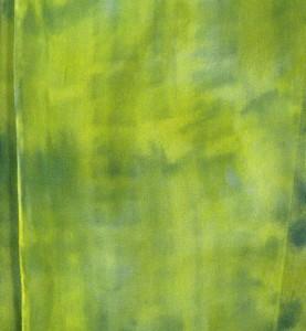 citrondetail