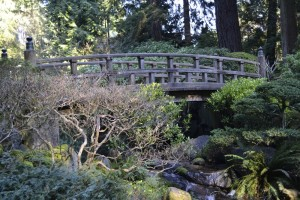 japanesegardenbridge
