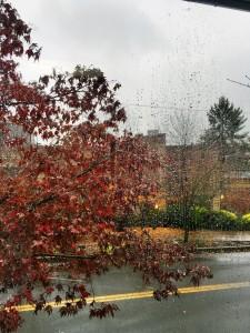 rainydayviewfromgym